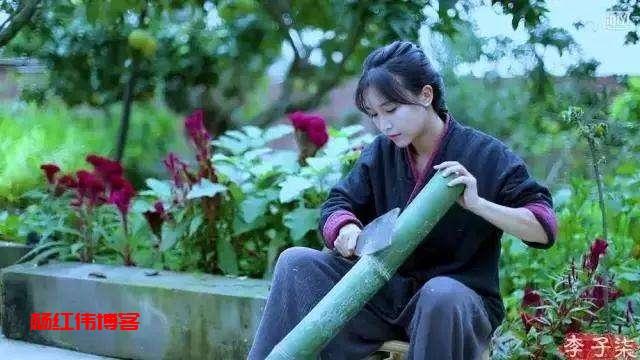 李子柒田园生活