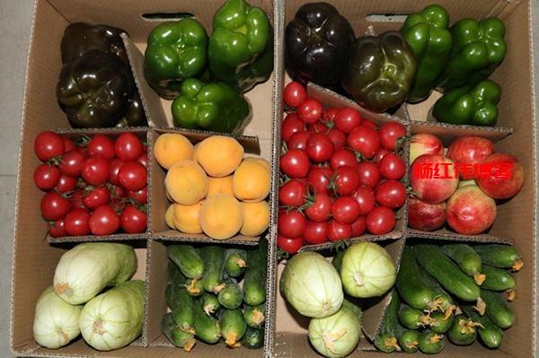 无公害高端水果蔬菜