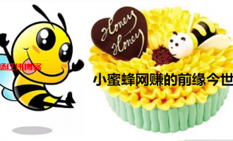 小蜜蜂网赚是真的吗?分享下我所知道的小蜜蜂网赚!